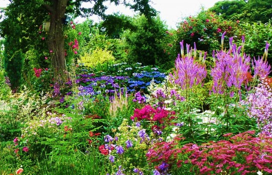 ... stylish cottage garden cottage garden ideas uk ... QEFRIAD