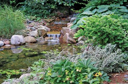 2016 home garden tour QLDWOJC
