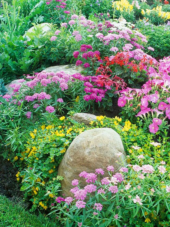6 steps to a no-work cottage garden FOXAIGP