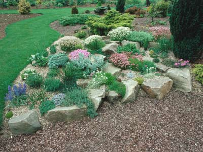 a natural-looking rock garden is a great way to spotlight understated  flowers and plants BRLFXPH