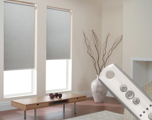automatic blinds motorised blinds NTEAPLL
