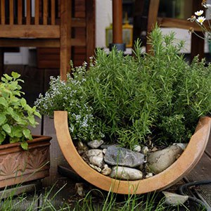 container gardening container inspiration gallery APXCNPJ