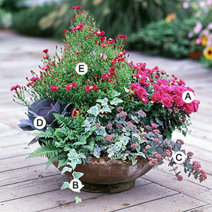 container gardening recipes for beautiful container gardens NIKPWQE