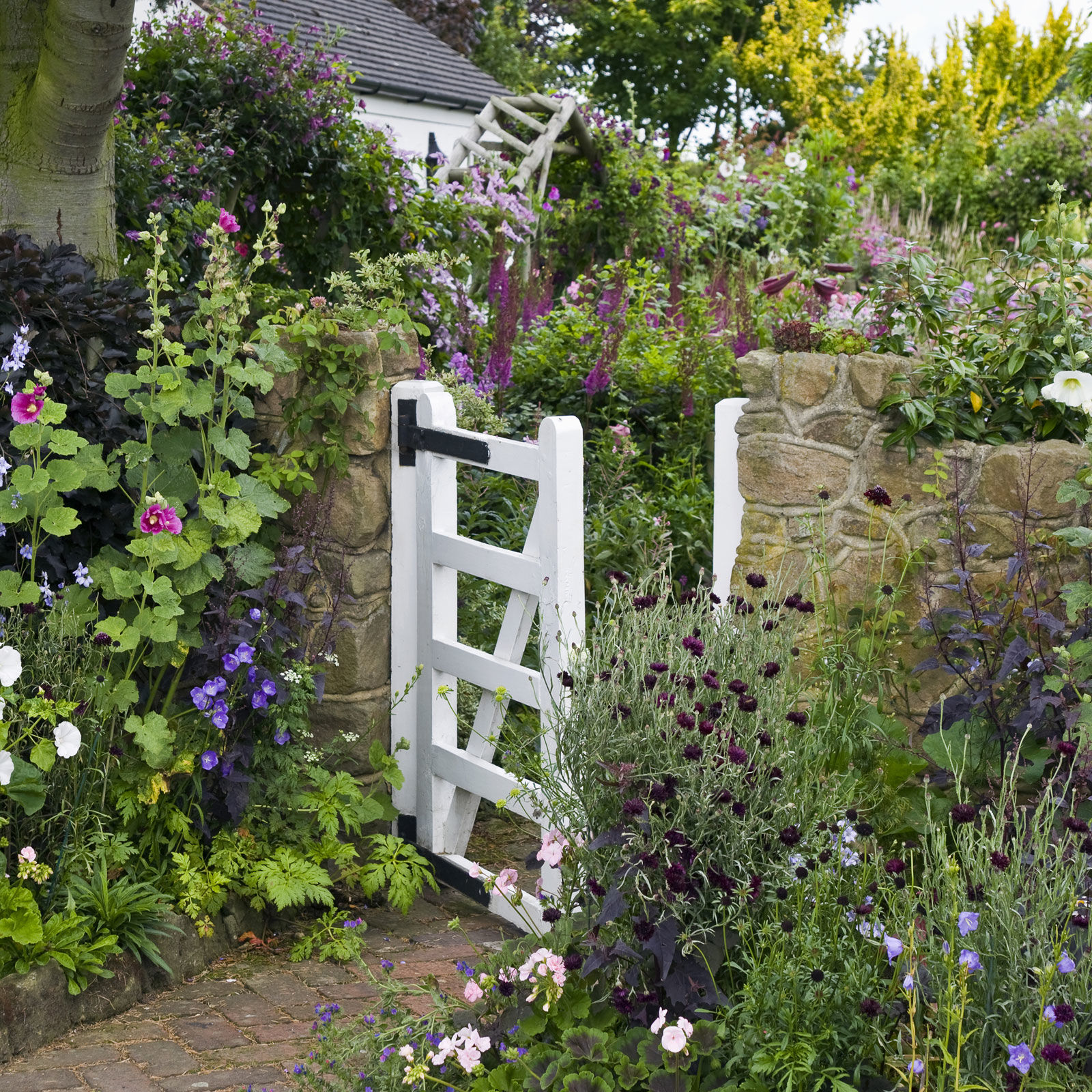 Cottage Gardens – Plants Ideas