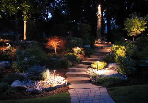 dramatic landscape lighting EHYADBR