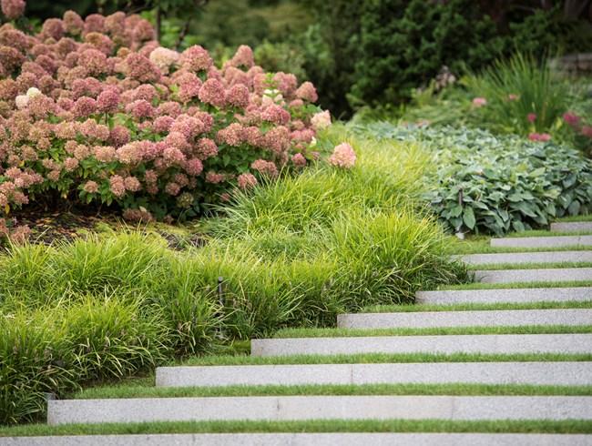 dwarf shrubs hoerr schaudt garden in chicagou0027s lincoln park garden design  calimesa, ... JEIBLBT