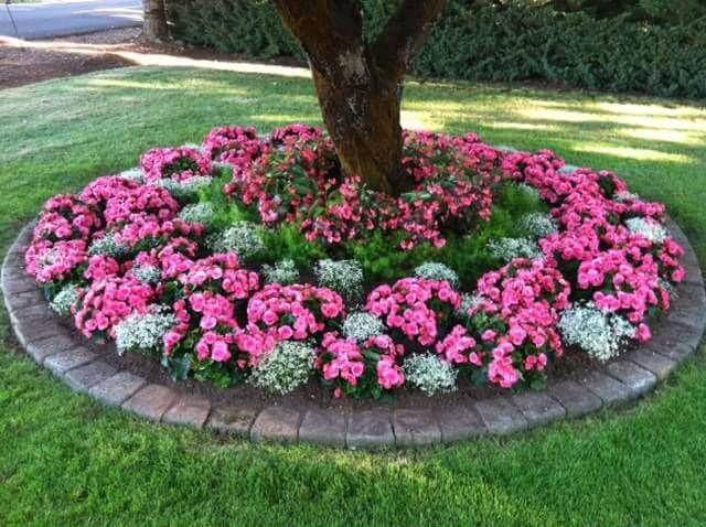 flower bed ideas 50 brilliant front garden and landscaping projects youu0027ll love LSZDGOW