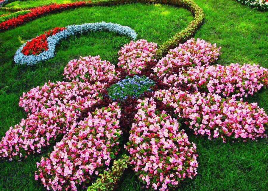 flower bed ideas flower shaped floral garden layout LVSRYWE