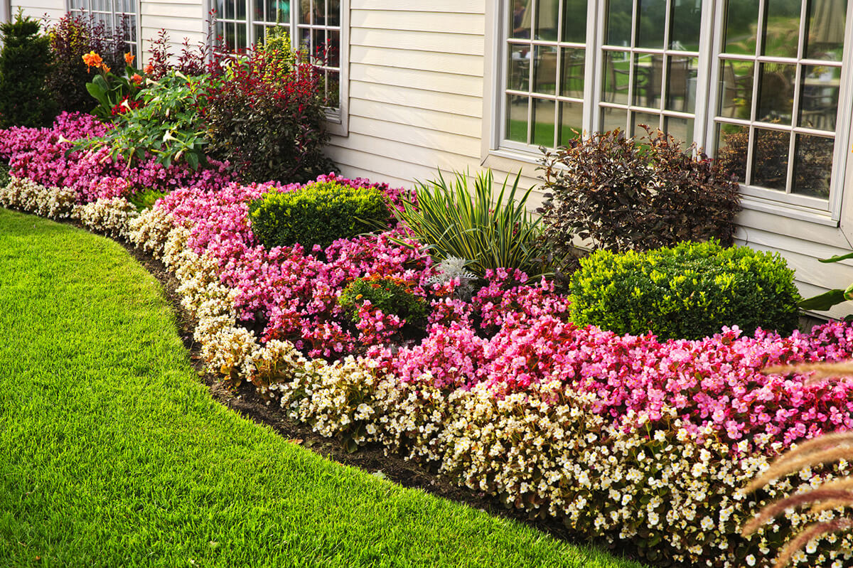 flower bed ideas perennial flower bed for summer-long blooms GCCFYQG