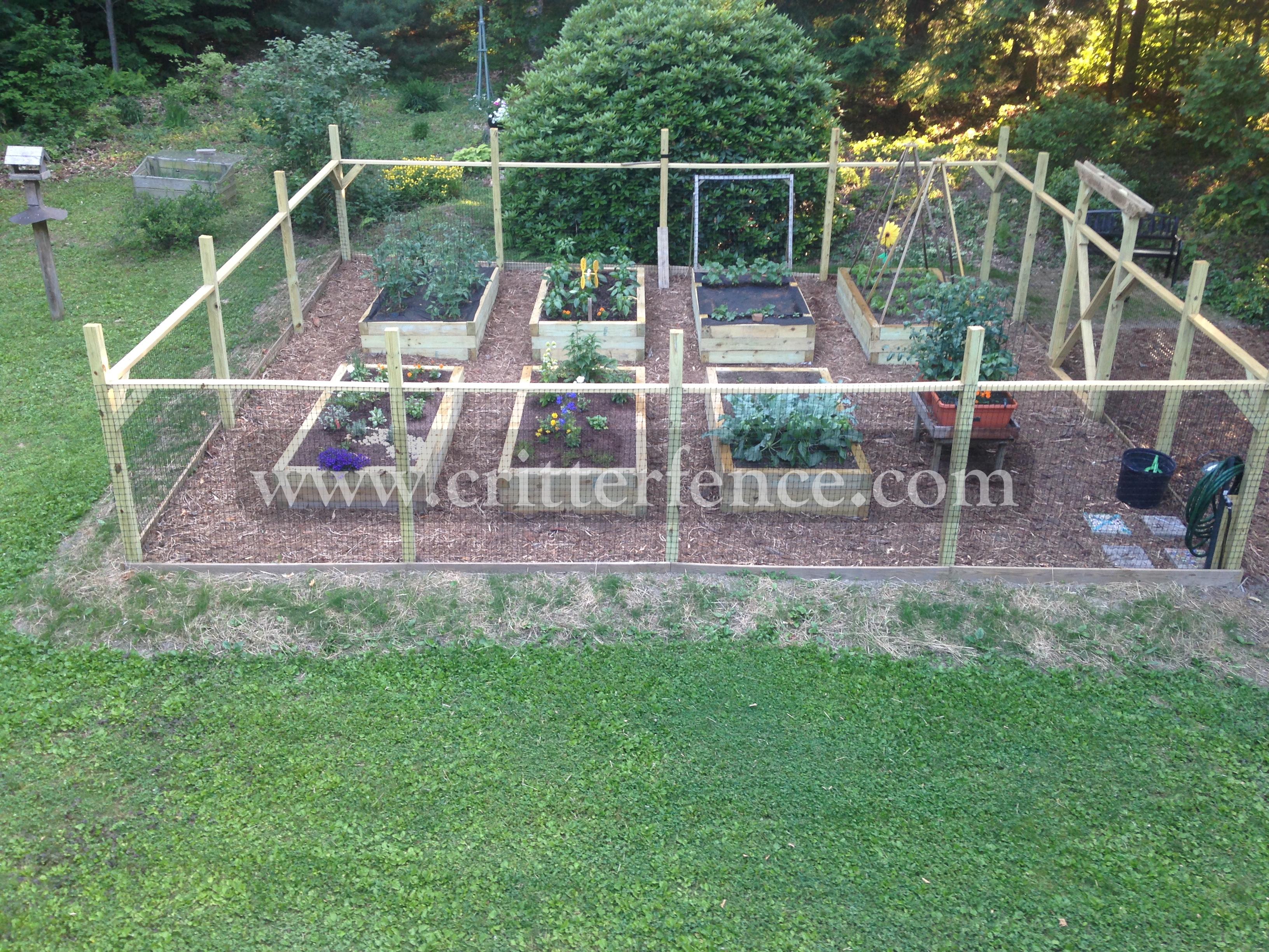 garden fencing critterfence 1100 garden fence pa OLCVMZO