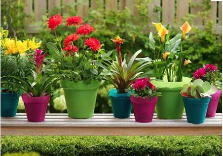 garden pots and planters TKQOVKO