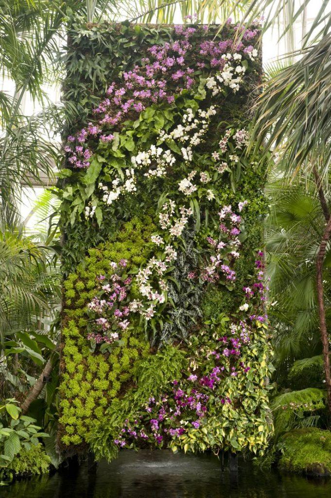 in the air: orchidelirium. vertical garden … YONOJDH