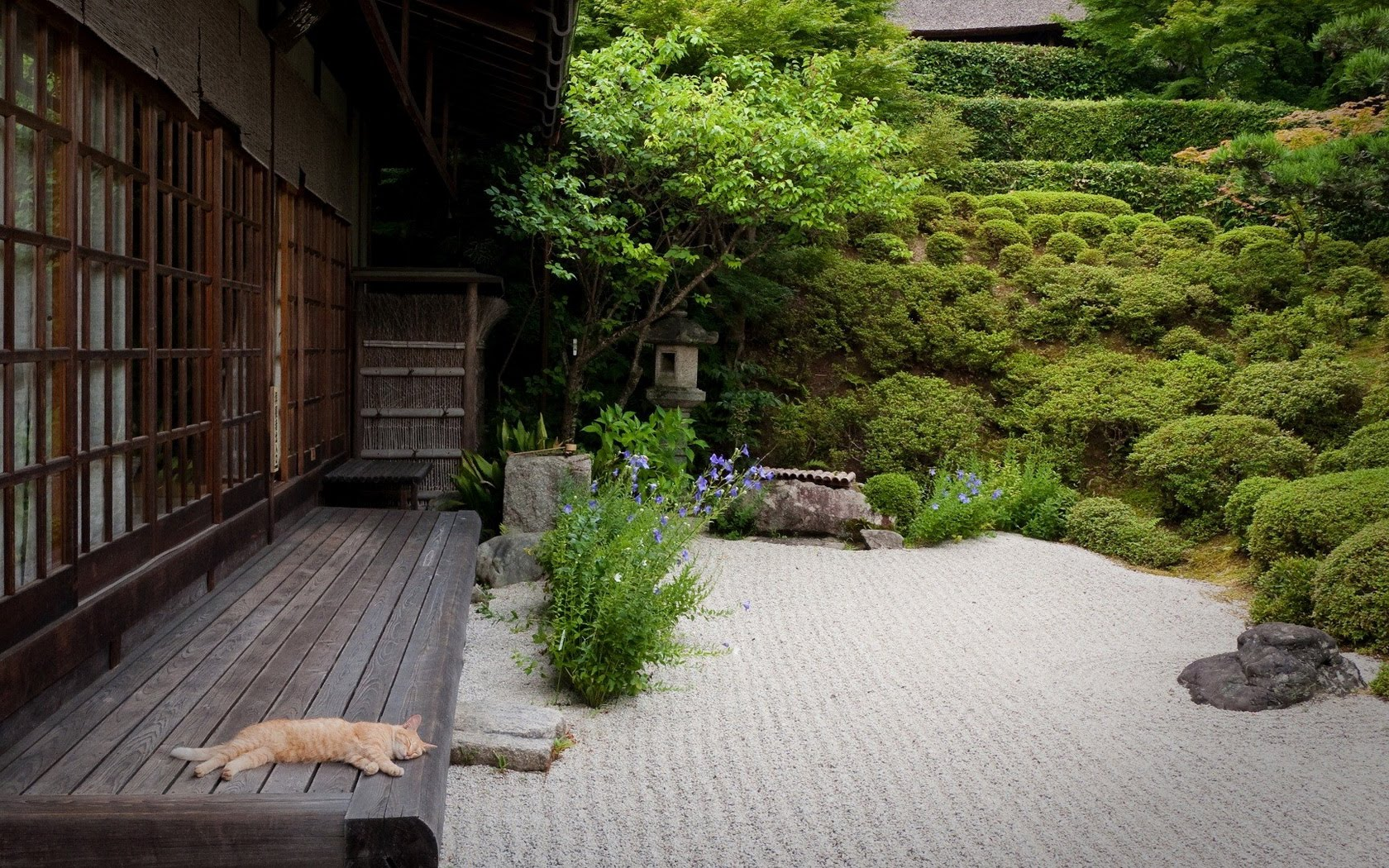 japanese garden ideas for landscaping - youtube BCMTMAB