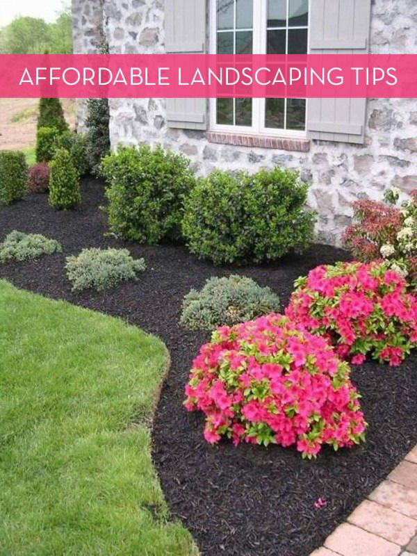 landscaping ideas 13 tips for landscaping on a budget SLUTYHD