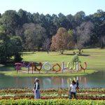 Pros of botanical gardens