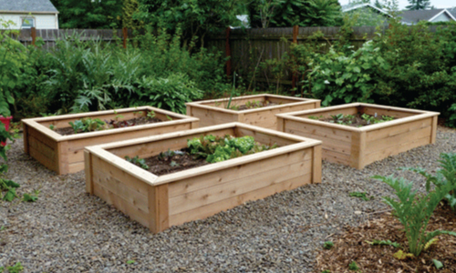 raised garden beds 2 wide x 22 IXZWYRS