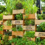 Creative gardening ideas to consider