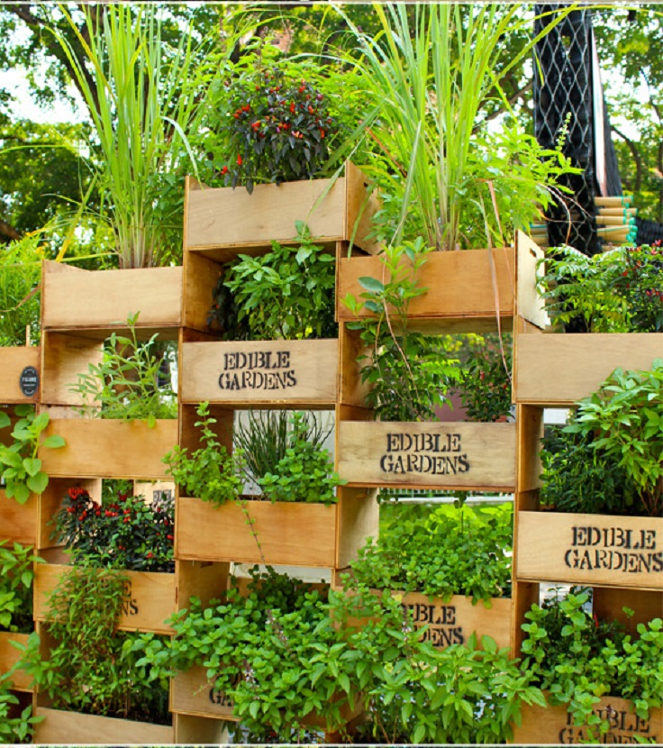 top 10 cool vertical gardening ideas MIWQPUQ