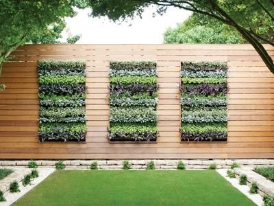 vertical garden 25+ best ideas about vertical gardens on pinterest | wall gardens, vertical  garden wall and vertical DCKMSVO