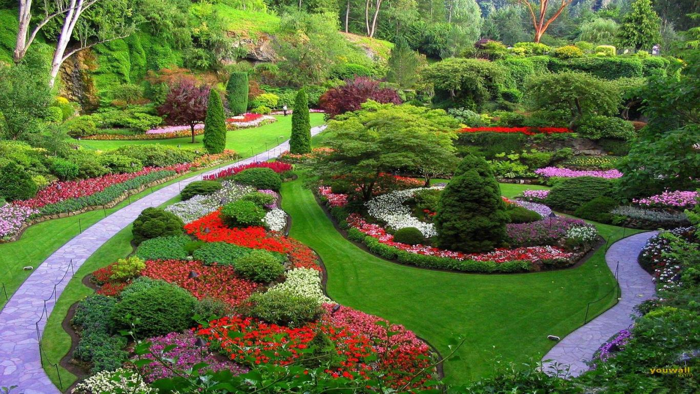 All you need to know on landscape design