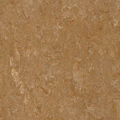 linoleum flooring marmorette - caramel apple linoleum ls582 BVTAQOJ