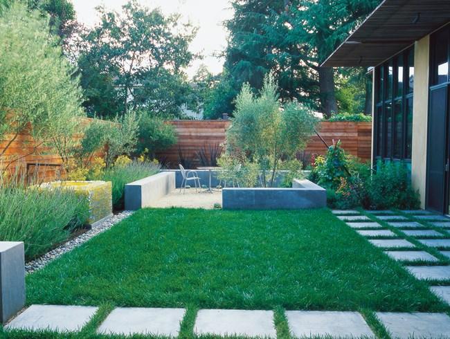small garden design minimalist garden, small lawn small garden pictures bernard trianor +  associates monterey, WLATMVB