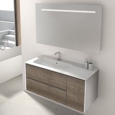 vanity units mosman 100cm wall mounted vanity unit with mirror and storage cabinet EPXIEDN