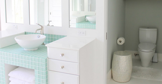 water closet there is an ongoing debate surrounding the pros and cons of a water VHWYOXS
