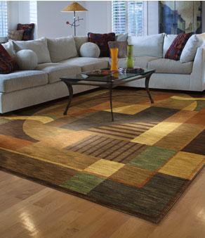 area carpet area rugs   shag area rug   floral area rug   concord ca BGZDXDD