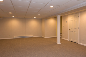 basement carpet basement carpeting from total basement finishing FGISLRB
