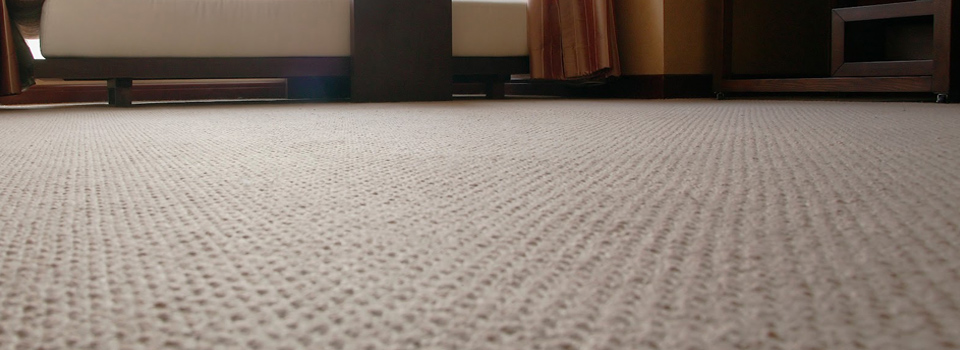best carpets carpet cleaning PFDCUTJ