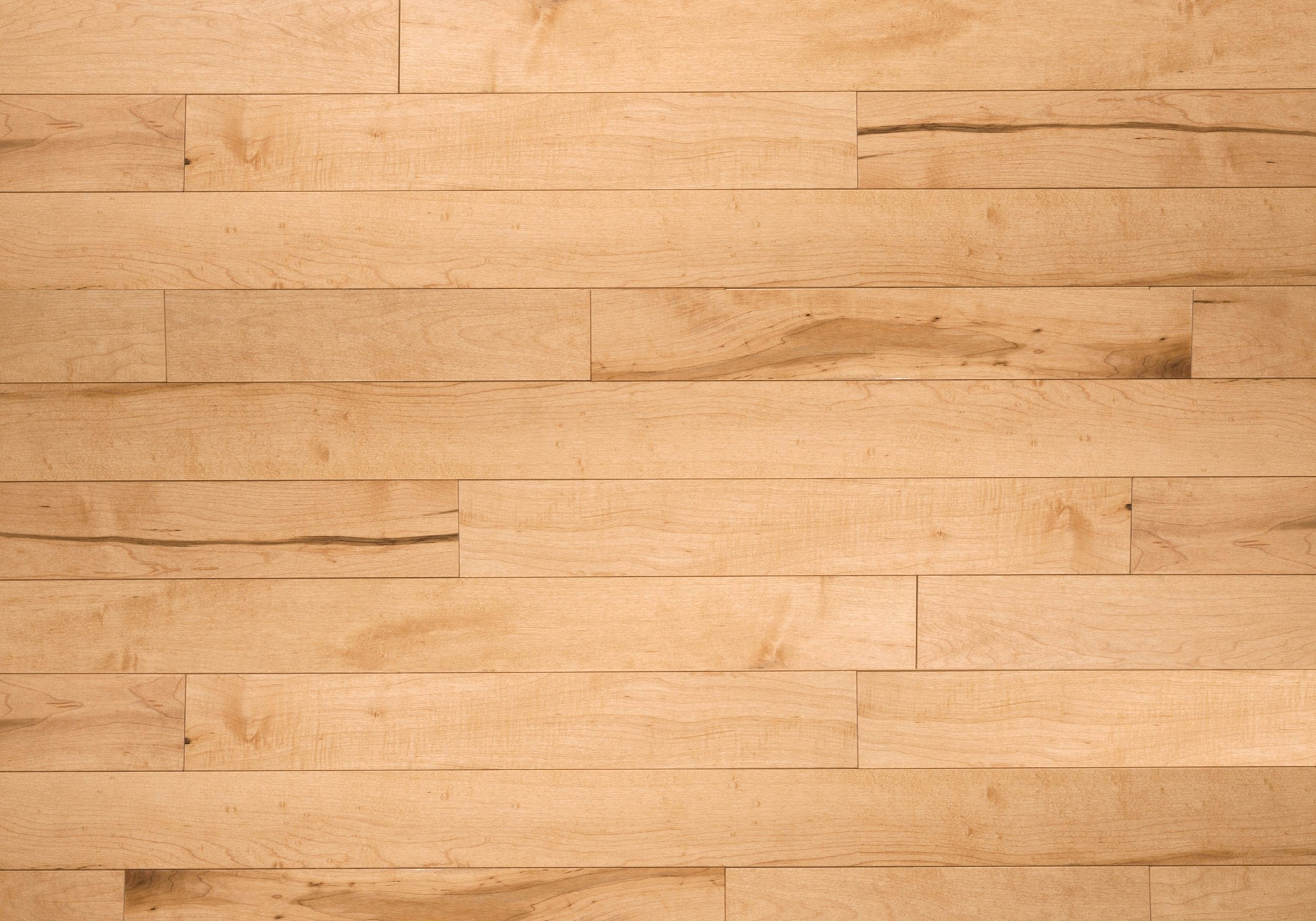 calypso. hard maple · hard maple hardwood flooring ... DJYBWEF