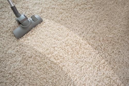 carpet floor carpet DENFSFU
