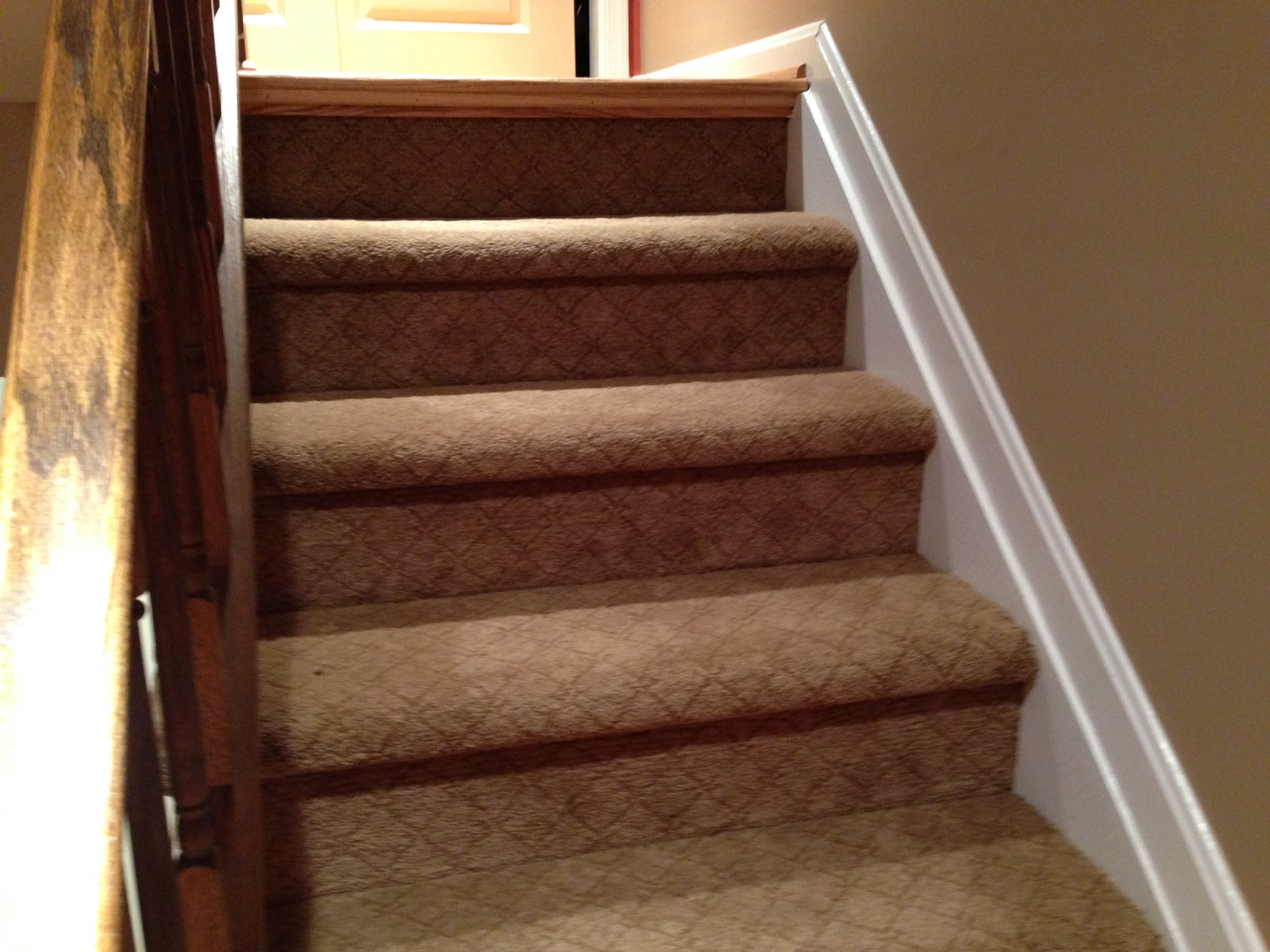 Carpet stairs carpeted stairs SADFXPO