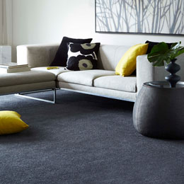 carpets and flooring online discount carpets LINIONB