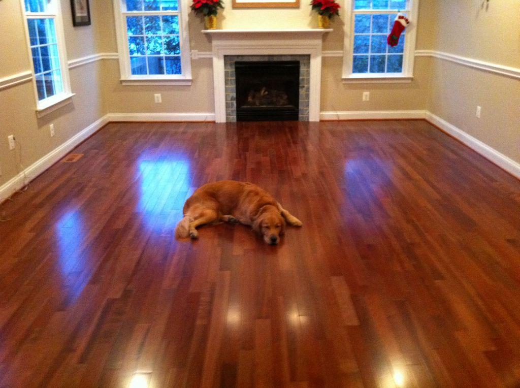 Cherry laminate flooring awesome cherry wood laminate flooring cherry laminate flooring as an  alternative of NVTGSFL