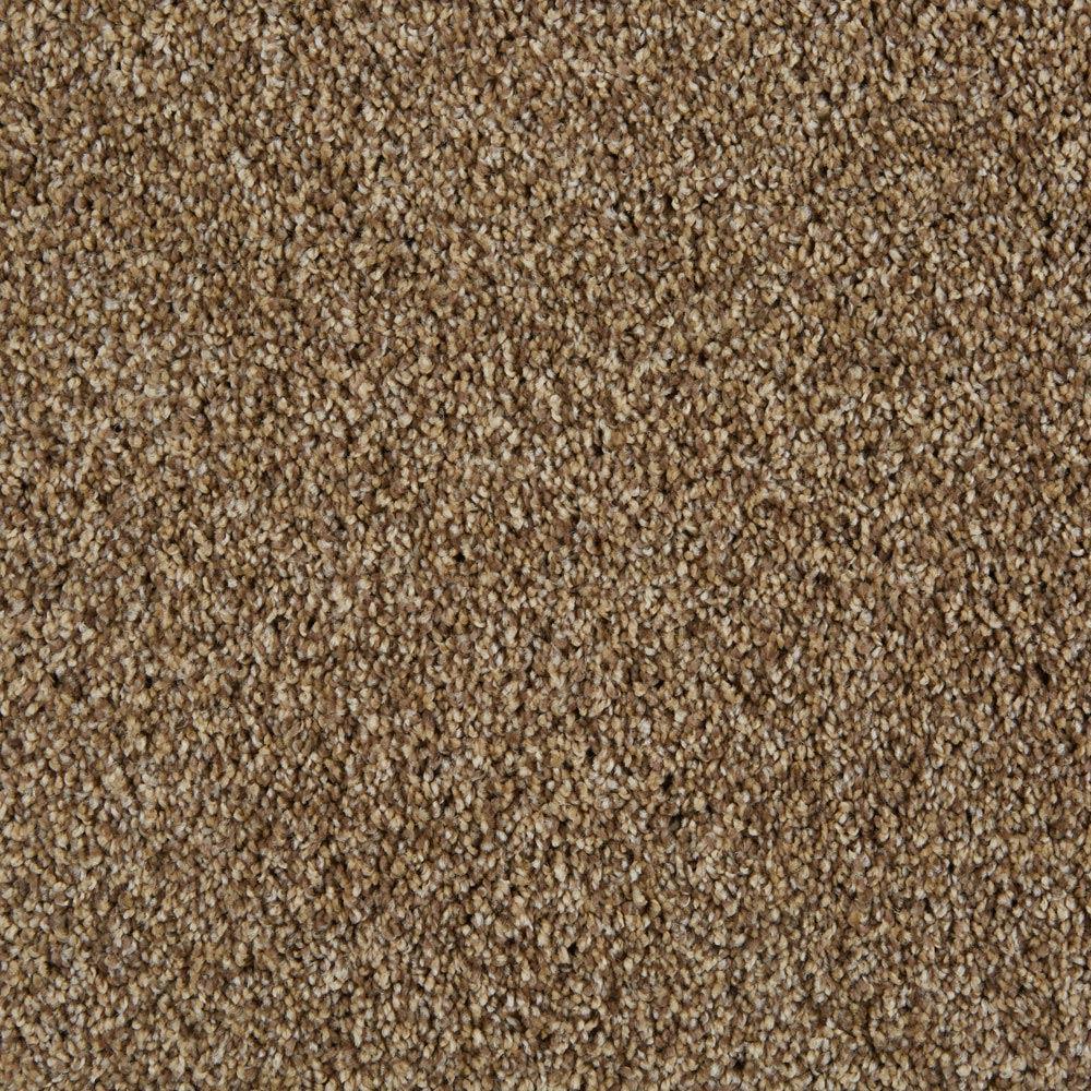 cool breeze plush carpet aged tree color PUIUJSS