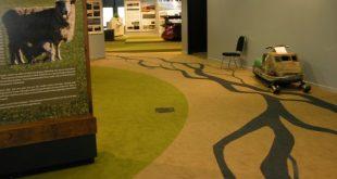 Custom designed carpets custom designed carpet manufacturers CDAIAQT