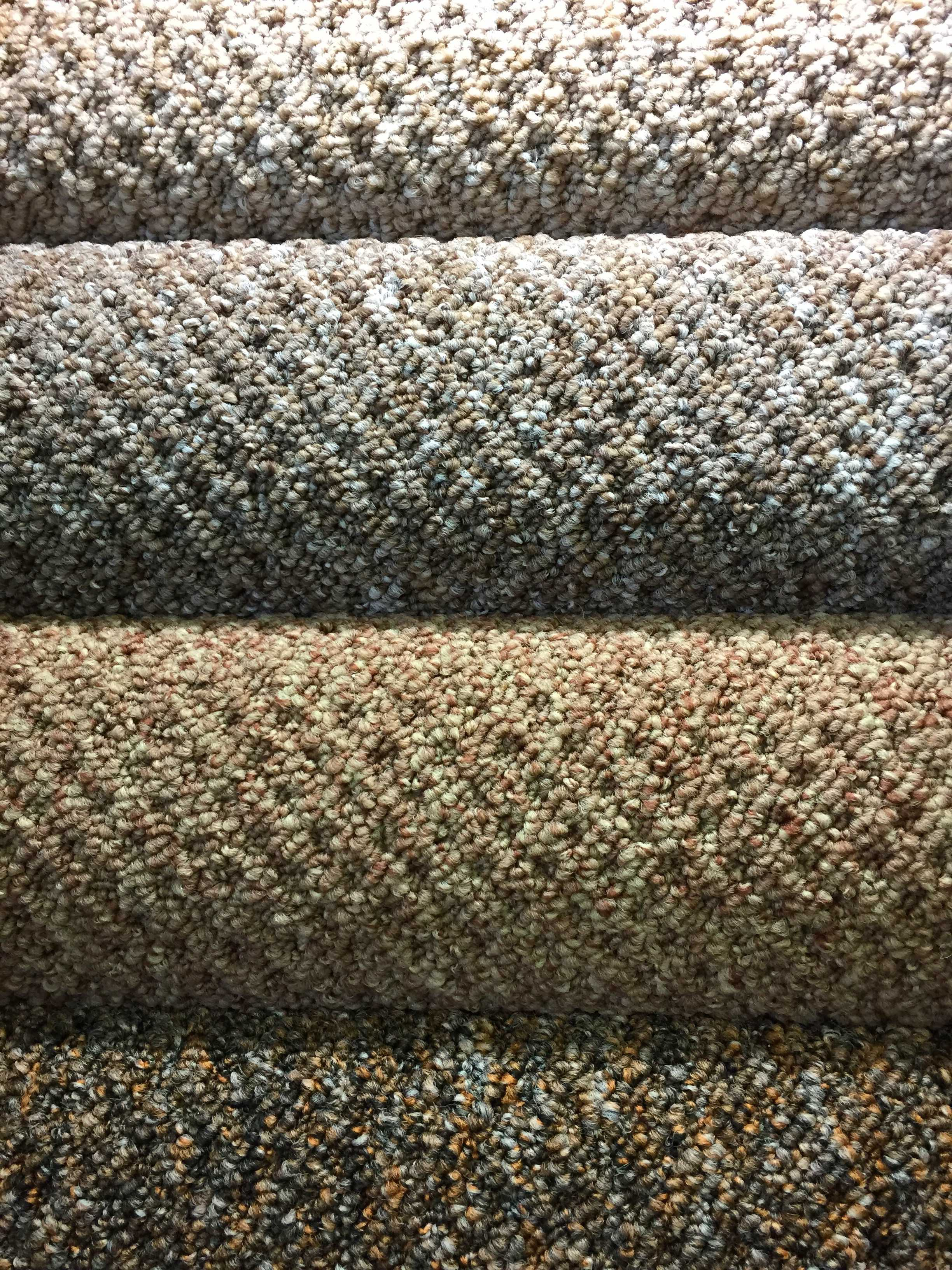 Enchanting Carpet Choices For Bedrooms Ideas Also Family Rooms Hobart Decoration Master Quwfsyb