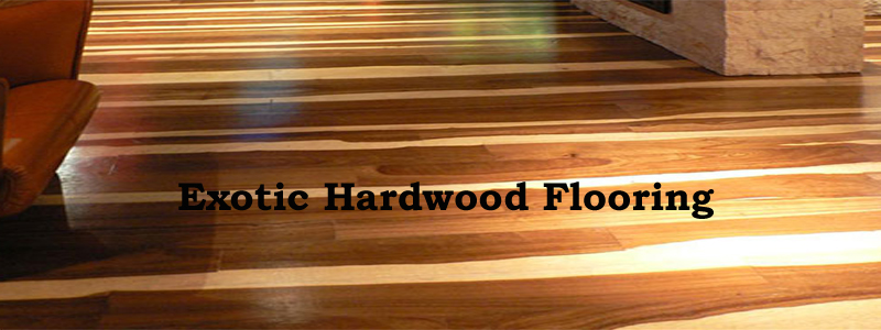 exotic hardwood flooring - the flooring lady LPYQVES