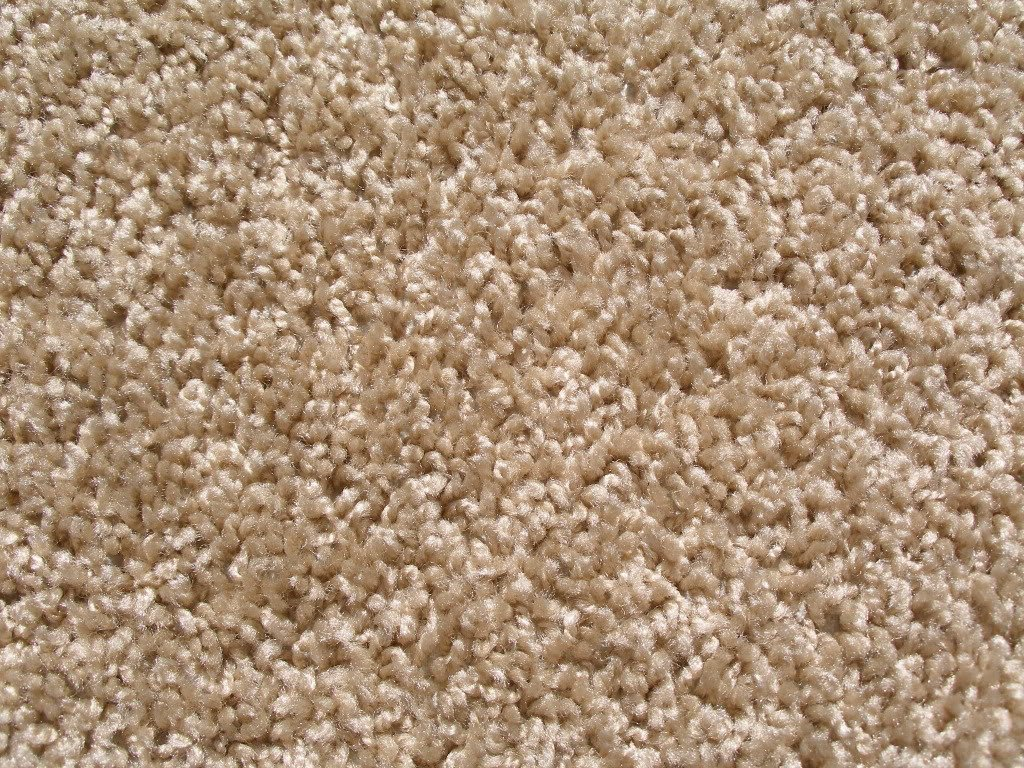 frieze plush textured carpet for residential or commercial use.  approximately 1/2 MFZPNSV