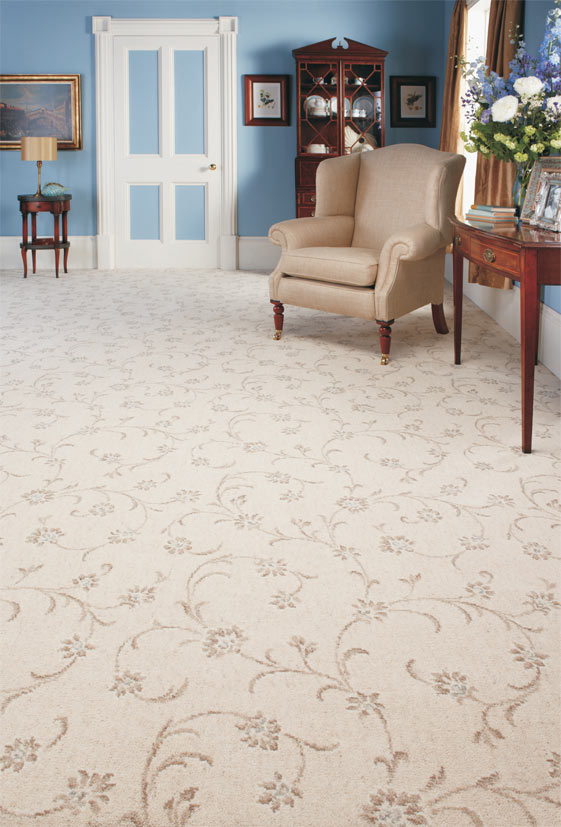 home carpet refresh and revive your home with professional carpet cleaning RQNTOLI