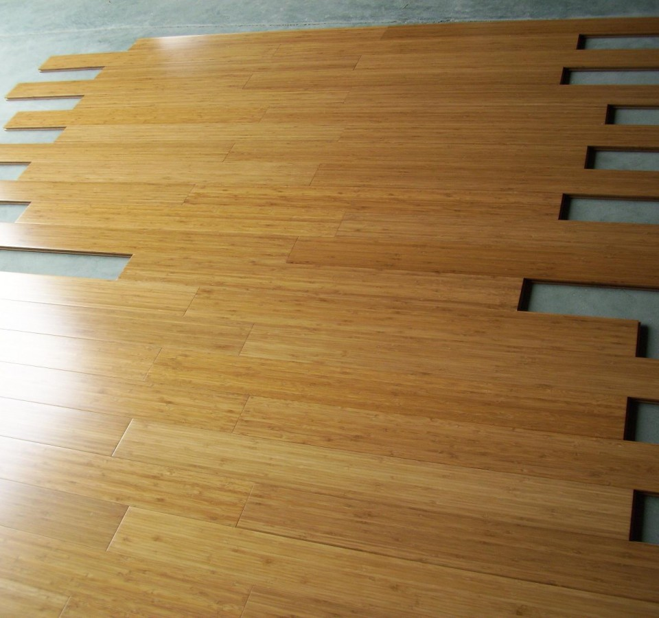 image of: modern bamboo laminate flooring YZEXGEJ