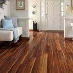 Laminate wood 20 everyday wood-laminate