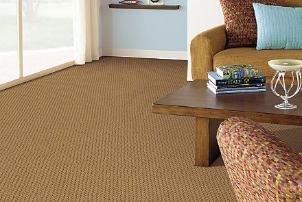 mohawk carpet benefits of mohawk smartstrand silk carpet FTITXEK