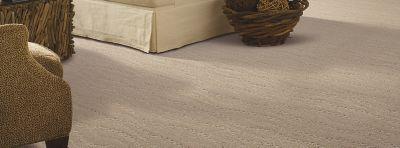 mohawk carpet majestic bounty, porpoise carpeting | mohawk flooring UINKPUO