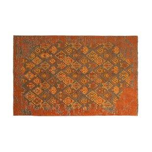 orange rugs eruh burnt orange area rug OJFSHEI