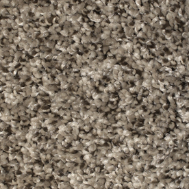 textured carpet stainmaster essentials notorious gaucho 12-ft w x cut-to-length gaucho  textured ORNIXUW