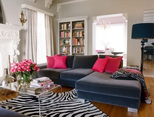 zebra print rug in living room pink and gray living room, lucite coffee table, zebra rug, with built-in DXVCVXW
