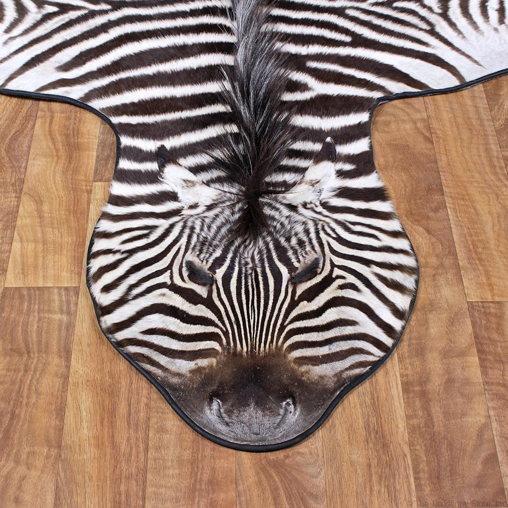 Overview Of Zebra Rugs
